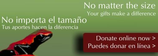 Dona / Donate