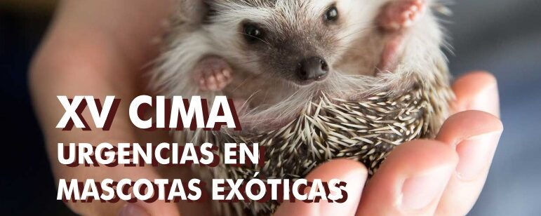 Urgencias en mascotas exóticas